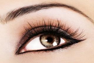 Eyelash & Brow